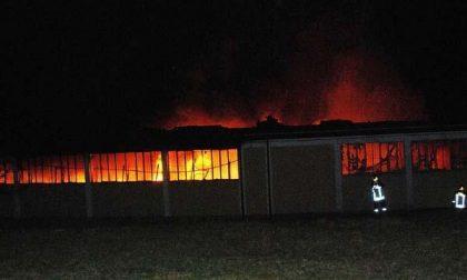 Ameno: è di natura dolosa l'incendio divampato lunedì sera