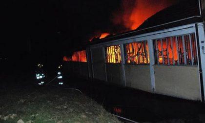 Ameno: fiamme in un magazzino. Al lavoro tutta notte i Vigili del fuoco