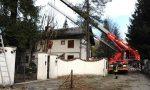 Forti raffiche di vento e rialzo delle temperature: danni in Ossola