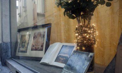 Le vetrine della biblioteca ragazzi allestite per S. Gaudenzio