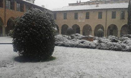 E' arrivata la neve anche in città a Novara