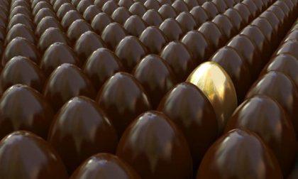 Appuntamento con le uova decorate dai volontari di Ama Novara onlus