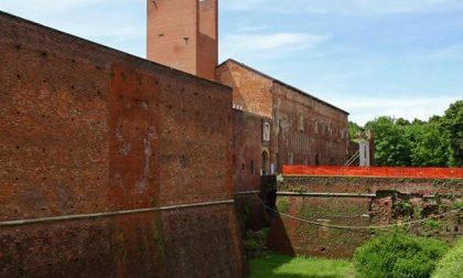 Capitale italiana della Cultura, Novara ci prova