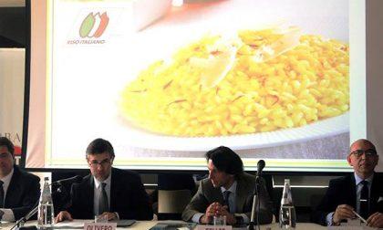 La filiera del riso italiano a Expo Milano 2015
