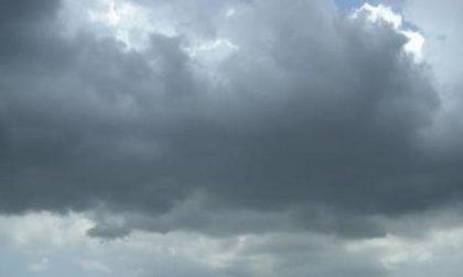 Alberi caduti, forte vento e grandinate: colpito tutto il Novarese