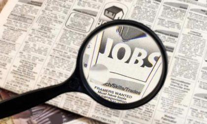 Iniziative dei giovani di Forza Italia per sostenere i coetanei alla ricerca di un lavoro