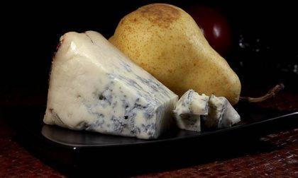 """Anche il gorgonzola tra i formaggi presi di mira dai """"tarocchi"""" Usa"""