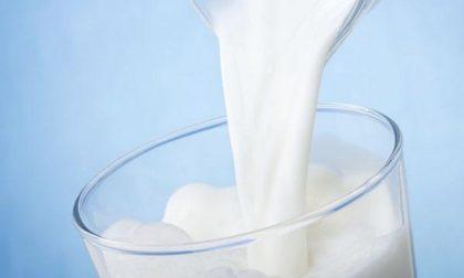 No latte in polvere, è l'ora delle petizioni