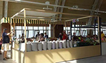 Tutti al (nuovo) mercato coperto di Novara (FOTOGALLERY)
