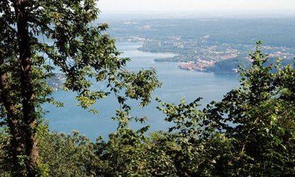 """L'appello delle associazioni ambientaliste: """"Biodiversità Piemonte indietro tutta!"""""""