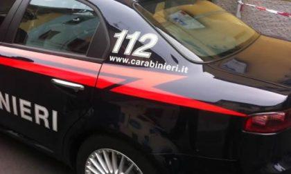 Ruba vestiti in centro a Novara, denunciato