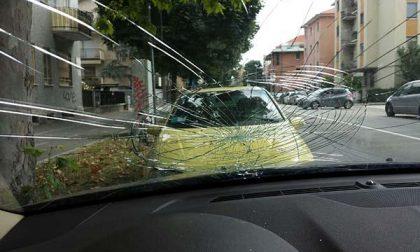 Auto danneggiata da un albero in viale Giulio Cesare