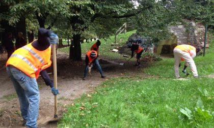 I profughi puliscono le stradine del Parco dei bambini