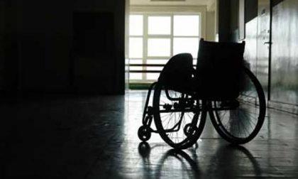 """Maggiore sensibilità nell'incontro con la disabilità grazie a """"La Terra in Comune"""""""