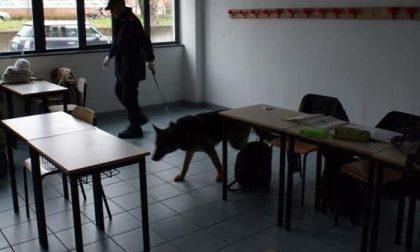 Carabinieri impegnati in controlli antidroga nelle scuole