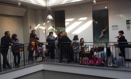 Giornata delleFamiglieal Museo, alta la partecipazione a Novara