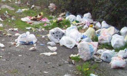 Puliamo il mondo, iniziative nelle scuole e giornata di raccolta rifiuti nel Parco del Ticino