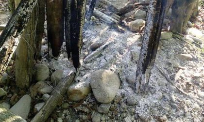 Fuochi non autorizzati al Parco del Ticino