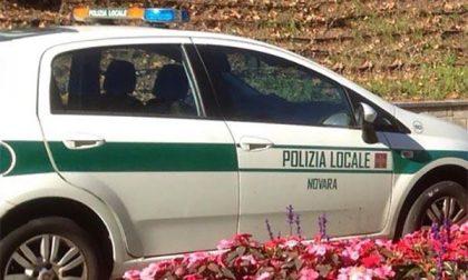 Novara extracomunitari bivaccano nel parco di via Solferino: sanzionati con daspo