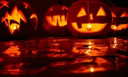 Halloween, per i bambini festa al Broletto e letture paurose in biblioteca