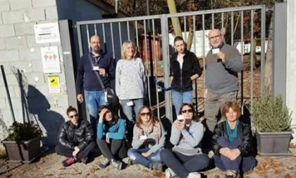 """L'associazione """"I Gatti del Borgo"""" protesta davanti ai cancelli del gattile"""