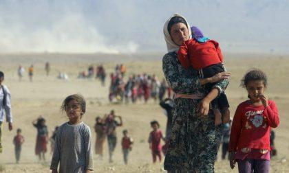 Mamre: da Borgomanero in Libano per un viaggio umanitario