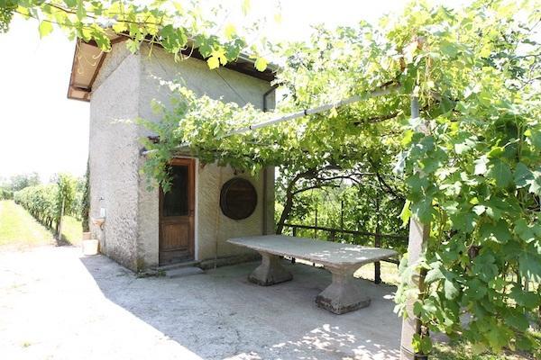 Giardini Moderni Borgomanero : Poderi garonau201d boca doc da tre generazioni corriere di novara