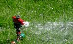 Senza piogge le irrigazioni sono da razionare: l'allarme dell'associazione Est Sesia