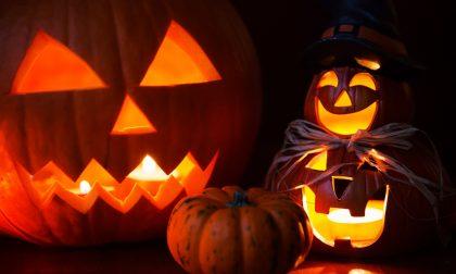 Halloween 2019: cosa fare nel novarese