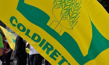 Pratiche commerciali sleali: Coldiretti invoca un decreto in tempi brevi