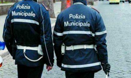 Chiedono l'elemosina esibendo finti cartellini: due daspo a Novara