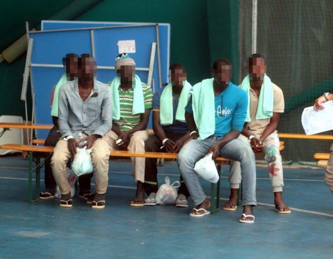Paura alle porte di Torino: due casi di malaria spaventano Chivasso
