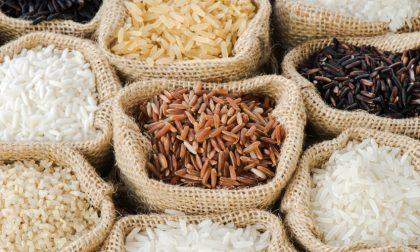Clausola di salvaguardia per il riso novarese