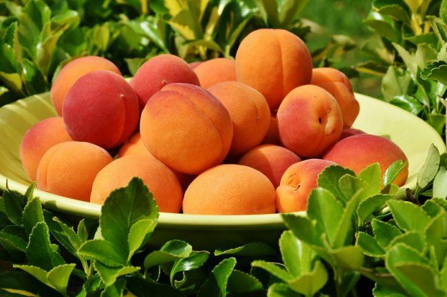 Ricette fresche per l'estate: albicocche, fragole e manghi