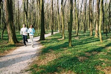 Percorso vita: sabato 21 inaugura il nuovo sentiero a Invorio