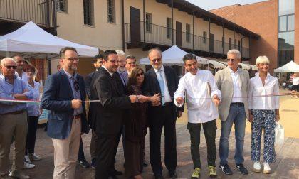 ExpoRice, al castello di Novara la festa del riso in tutte le sue forme FOTOGALLERY