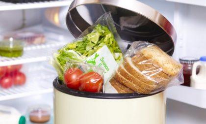 Giornata dell'Alimentazione: come combattere gli sprechi