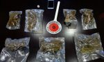 Cane antidroga scopre marijuana in pizzeria
