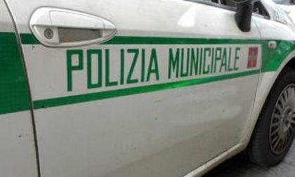 Novara corso di formazione per agenti di polizia locale