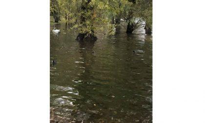 Esondazione del Lago Maggiore prevista per questa notte
