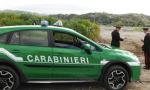 Furto venatorio e maltrattamenti a Dormelletto: i carabinieri forestali segnalano un residente