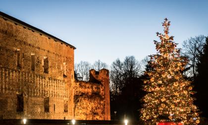 Natale a Novara pieno di luci, musica ed eventi per tutti