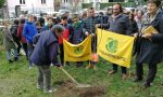 Festa dell'albero: piantato un pero nel giardino della scuola