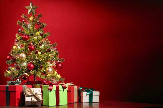 Consigli per scegliere l'albero di Natale giusto