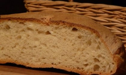 Si sposta dal Comune per comprare il pane: multato