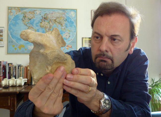 Viveva in Lombardia il più grande antico dinosauro carnivoro