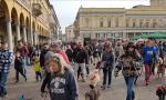 Cani e gatti non sono regali natalizi, l'appello della Lida alla decima Stracanina novarese