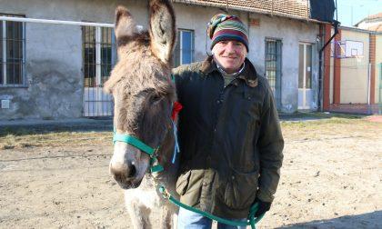 Borgomanero: in oratorio la benedizione degli animali