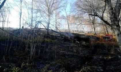 Boschi in fiamme nel Vergante, probabile l'origine dolosa