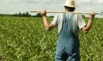 """Gelo, agricoltura in ginocchio. La Regione: """"Servono finanziamenti straordinari"""""""